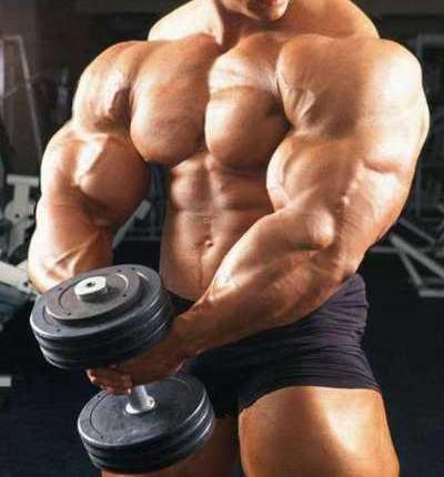 bodybuilding1.jpg?w=595